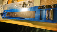 kit photo with lexan printed fretboard