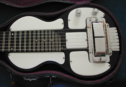 rickenbacher substitute white panda panels on lap steel guitar